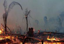 quemas argentina