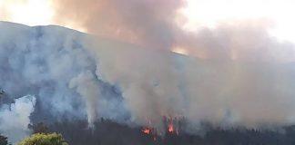 Incendio Río Negro