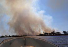 incendios delta parana